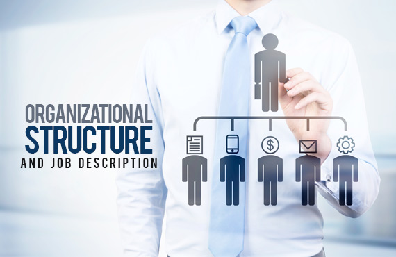 الهيكل التنظيمي والوصف الوظيفي