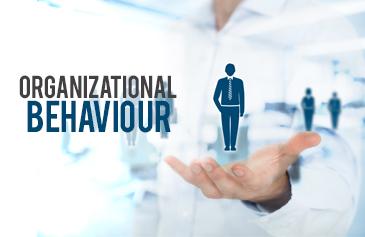 كورس السلوك التنظيمي في المؤسسات